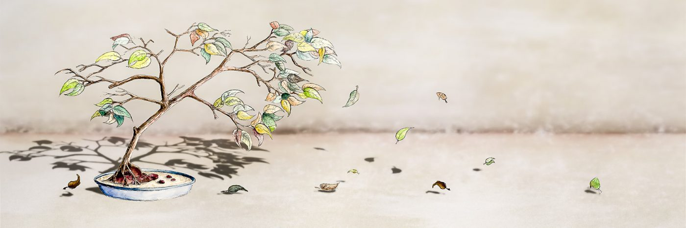 Pen and Watercolour Bonsai