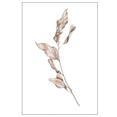 Natures Dance - Keepsake Cards by deGroot-Arts, the perfect gift.