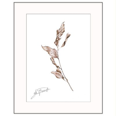 Natures Dance is a fine line pen and ink drawing on paper by deGroot-Arts