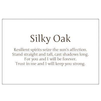 Poem from Silky Oak